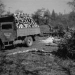 Bettisfield worksite 1949