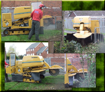 four images of our stump grinder in Wolverhampton
