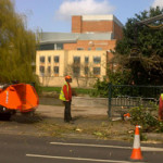 Tidying and chipping the branches